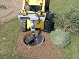 tree auger